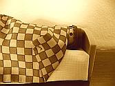 Hilft Schäfchenzählen bei Einschlafproblemen s